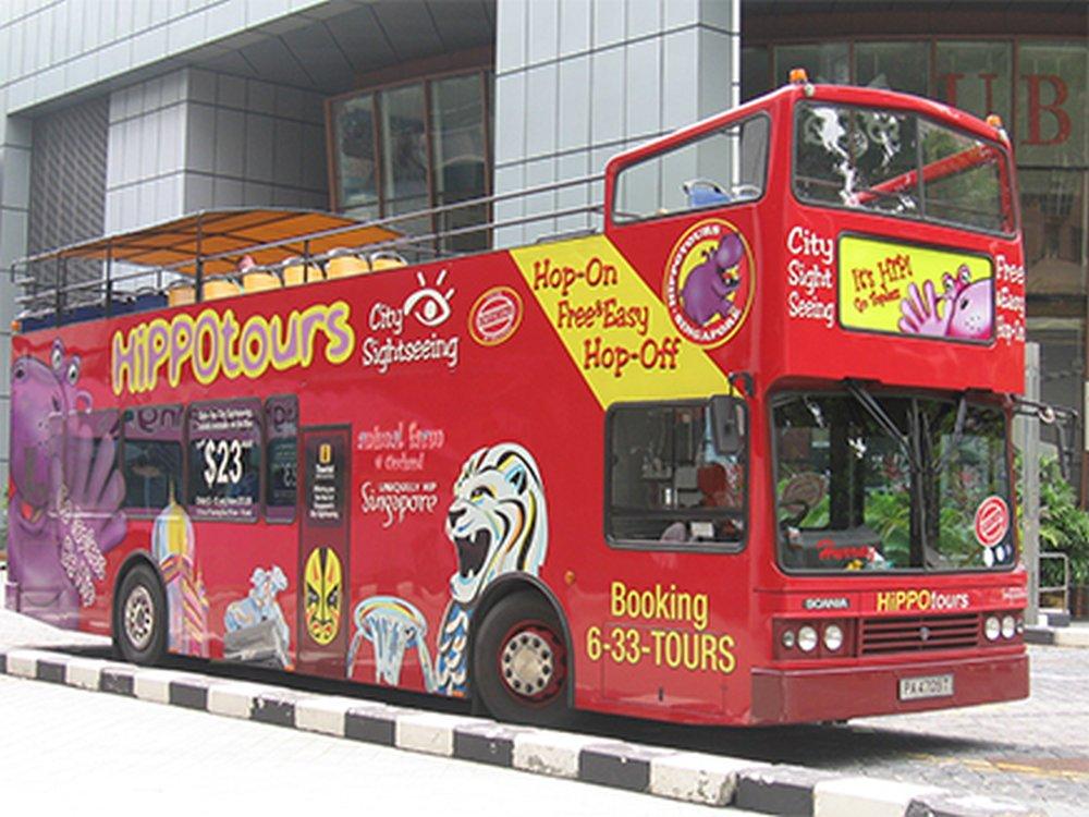 Hippo-Bus